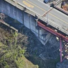 崖下転落事故18歳少年4人死傷「心霊スポット探していた」