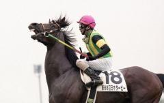 ジャングルポケットが死ぬ 2001年に最優秀3歳牡馬など受賞