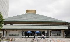 大相撲・初場所中継でネット騒然「溜席の妖精」に話を聞いたのイメージ画像