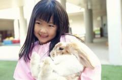 中国人が日本の学校教育に対して「背筋が凍る」と述べた理由 中国のイメージ画像