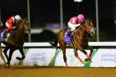 ピンクカメハメハがレース中に急性心不全で急死、2月サウジダービーV