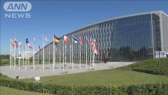 NATOサミットに中国反発「中国脅威論をあおるな」のイメージ画像