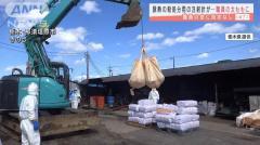 豚殺処分用の注射針 獣医師が誤って職員に刺す 栃木県那須塩原市のイメージ画像