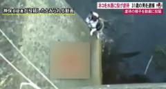 ネコを水路に投げ虐待、様子を動画に投稿 男(31)を逮捕 福島