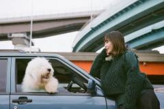 土岐麻子、2/17リリースのカヴァーALでバカリズムとコラボのイメージ画像