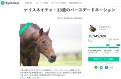 「ウマ娘」の大ヒットも影響? 支援金額3000万円突破!残り数日間の「ナイスネイチャ・33歳のバースデードネーション」のイメージ画像