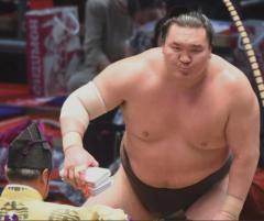 白鵬が柔道会場訪れていた SNSで露呈「大きな問題だよ」芝田山広報部長のイメージ画像