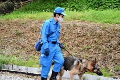 """横浜のアパートから""""逃走""""のニシキヘビ、警察犬投入も見つからず 住民「子どもを外で遊ばせるのが不安」のイメージ画像"""