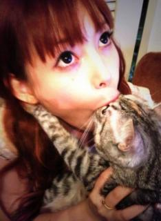 中川翔子、猫を浴槽で泳がせ逮捕の男性に激怒「許せない」「逮捕は当然」