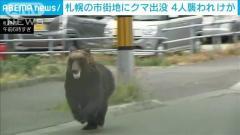 札幌でクマ出没 4人けが 陸自駐屯地に逃げ込む