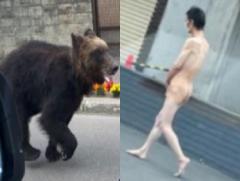 試される大地、クマや全裸男、本日の札幌がひどすぎると話題に