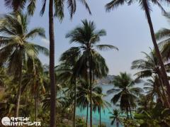 タイ南部スラタニ県でマスク着用が義務化、違反で罰金2万バーツのイメージ画像
