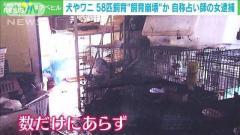 """24種類動物と""""ひとつ屋根の下""""…自称・占い師逮捕 東京・大田区のイメージ画像"""