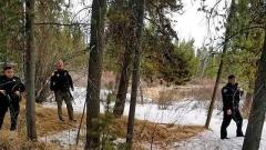 観光ガイド、クマに襲われて死亡 米イエローストーン国立公園近く