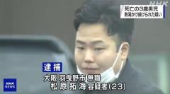 クッションでの殴打をスマホ撮影 母親と交際相手 大阪3歳虐待死