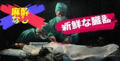 イカゲーム 臓器摘出場面で中国の人権問題が浮上…国連も注目 中国人権問題のイメージ画像