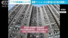 32階建て屋上から植木鉢落とし中国人女逮捕 中国・安徽省のイメージ画像