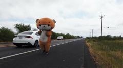 「特に目的もなく」ひたすら歩いて... クマの着ぐるみで600km アメリカのイメージ画像