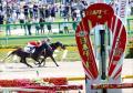 JRA 日本ダービー(G1)マルゼンスキーが干された「謎」に迫る……8戦8勝「合計61馬身差」で引退した悲運の怪物