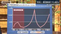 東京 年末に深刻な医療ひっ迫予想…東大准教授らが試算のイメージ画像